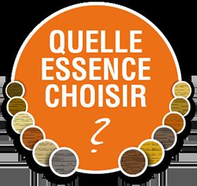 QUELLE_ESSENCE_CHOISIR-3